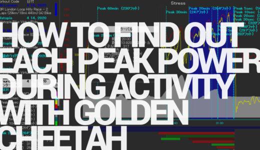 ゴールデンチーター(GoldenCheetah)でアクティビティ中の各ピークパワーを調べる方法